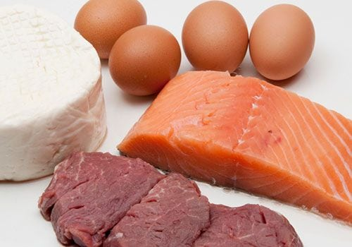 Forms Of Protein in Muscle Building Diets
