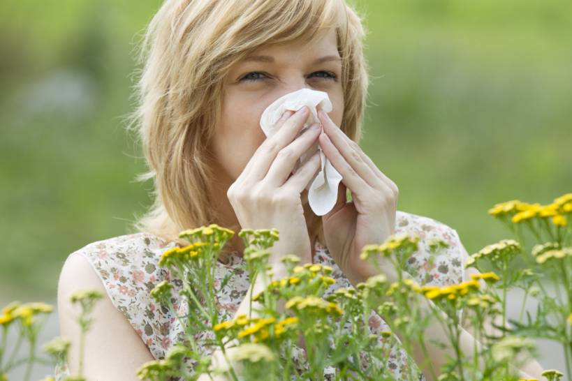 Allergic to your Lawn? Maybe Not!
